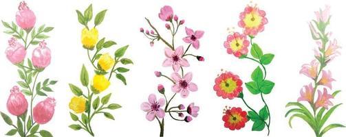 aquarelle fleur plantes vertes vecteur