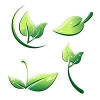 feuilles en style cartoon avec des gouttes isolées sur fond blanc vecteur