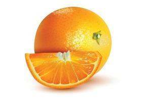 Fruits orange avec des tranches d'orange isolé sur fond blanc vecteur