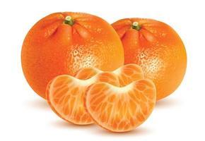 Mandarin mûr avec gros plan sur fond blanc vecteur