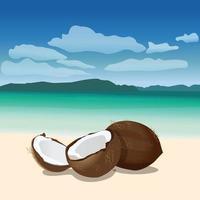 noix de coco sur la plage vecteur