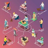 illustration vectorielle d'organigramme isométrique bénévoles de soins aux animaux vecteur