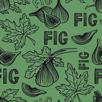 motif avec des figues et des feuilles vecteur