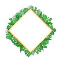 Feuilles tropicales autour d'un cadre en forme de diamant copie espace fond abstrait lumineux pour bannière flyer ou couverture avec espace de copie pour le texte ou l'emblème vecteur