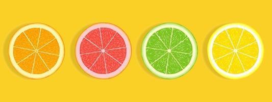 Tranches d'agrumes de citron vert pamplemousse orange et citron isolé sur fond blanc vecteur
