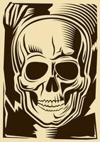 Crâne humain vecteur