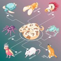 illustration vectorielle d & # 39; organigramme isométrique animaux exotiques vecteur