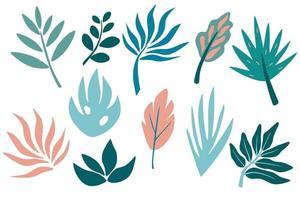 ensemble de feuilles tropicales, verdure, feuilles, brindille, branche. éléments graphiques botaniques dessinés à la main. vecteur