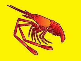 vecteur de crevettes rouges