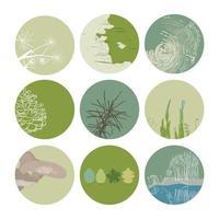 mettre en évidence la couverture définie des icônes botaniques florales abstraites pour les médias sociaux vecteur