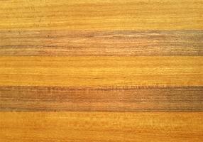 Fond de belle texture bois vecteur