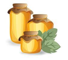 image vectorielle de miel dans divers contenants vecteur