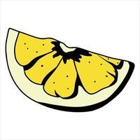tranche de citron jaune citron pour le thé style de bande dessinée d'agrumes vitamine c vecteur