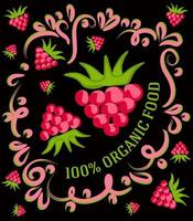 c'est une illustration vintage spectaculaire sur un fond sombre avec des framboises et l'inscription 100 pour cent d'aliments biologiques vecteur
