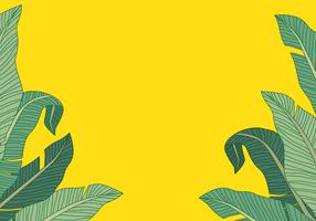 Fond de feuille de bananier vecteur