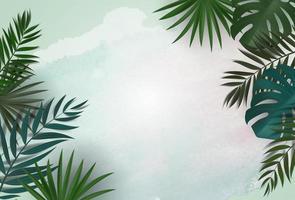 fond naturel avec palmiers tropicaux et feuilles de monstera vecteur