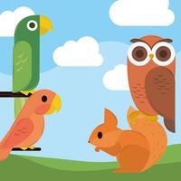 oiseaux écureuil géométrique vecteur
