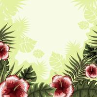 fond floral tropical d'été vecteur