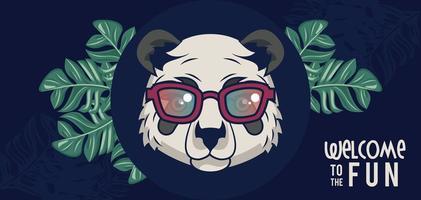 bienvenue à l'amusement avec ours panda utilisant des lunettes vecteur