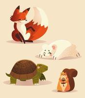 dessin animé animaux renard tortue écureuil et ours polaire icônes de la faune vecteur