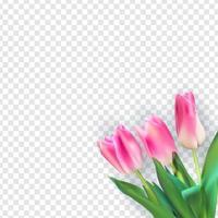 illustration vectorielle réaliste tulipes colorées vecteur