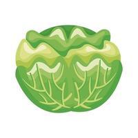icône de style détaillé de légumes sains chou vecteur