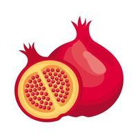 grenade frais délicieux fruits icône de style détaillé vecteur