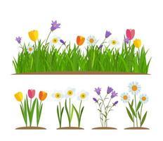 Élément de décoration de carte de voeux bordure herbe et fleurs vecteur