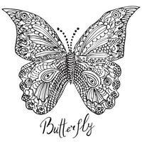 croquis dessiné main ornementale de papillon vecteur