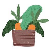 panier de jardinage avec des carottes de légumes frais vecteur