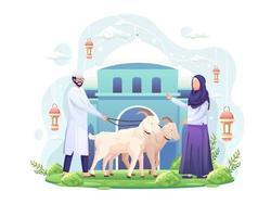 le couple célèbre eid al adha en faisant don de deux chèvres pour qurban eid al adha mubarak vector illustration