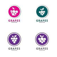 icône du logo vectoriel raisins isolé