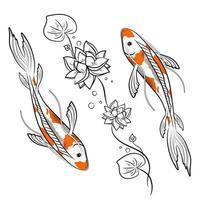 carpes koi poissons avec illustration vectorielle lotus vecteur