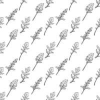 modèle sans couture de roquette. feuilles de roquette sur fond blanc. assaisonnement italien épicé et aromatique. illustration vectorielle dessinés à la main vecteur