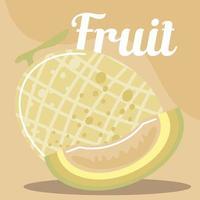 melon fruits frais bio alimentation saine vecteur