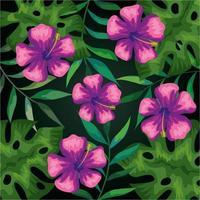 fond de fleur rose et de feuilles tropicales vecteur