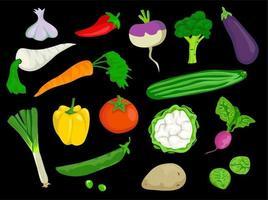 collection de légumes mélangés vecteur