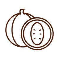 icône de style de ligne de produit d'abricot de fruits frais d'aliments sains vecteur