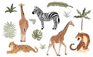 collection d'objets animaux safari avec léopard vecteur