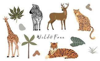 collection d'objets animaux safari avec girafe zèbre tigre léopard vecteur