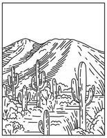 pic wasson à tucson mountain district dans le parc national de saguaro situé en arizona états-unis ligne mono ou dessin au trait noir et blanc monoline vecteur