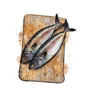 poisson hareng salé sur une planche à découper à partir d'une éclaboussure de croquis dessinés à la main à l'aquarelle illustration vectorielle de peintures vecteur