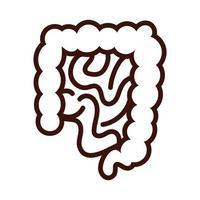 style de ligne des organes humains des intestins vecteur