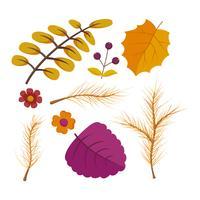 Beaux vecteurs ensemble floral aquarelle automne vecteur