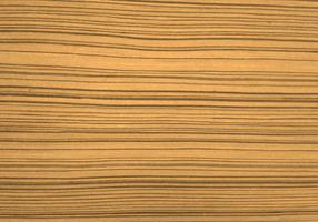 Beau fond de texture du bois vecteur