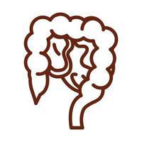 corps humain, intestin, anatomie, organe, santé, icône, ligne, style vecteur