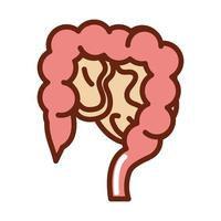 ligne de santé d'organe d'anatomie d'intestin de corps humain et icône de remplissage vecteur
