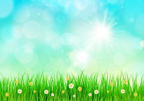 Fond de printemps ciel ensoleillé vecteur