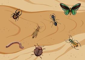 vue de dessus de différents types d'insectes vecteur