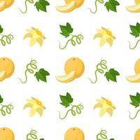 modèle sans couture avec melons, fleurs, boucles et feuilles. joli imprimé d'été avec des fruits entiers et demi. décoration festive pour textiles, papier d'emballage et design vecteur